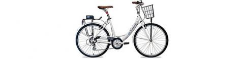 Zagster bikeshare bike